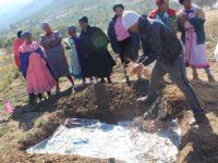 Garden projects grow communities